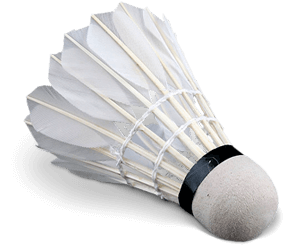 volante badminton